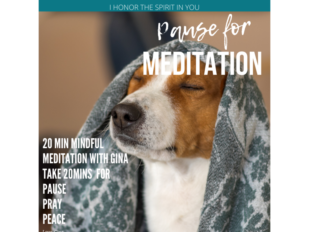 Mindful Meditation via Zoom